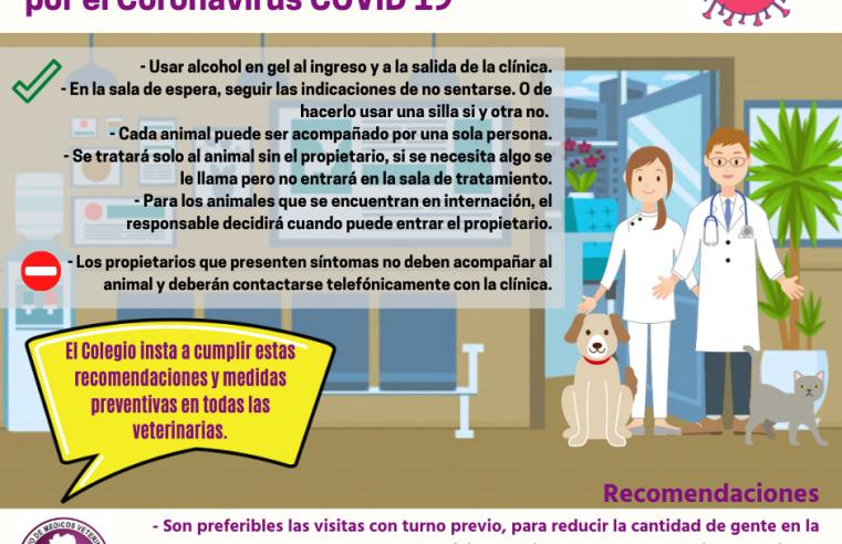Coronavirus: protocolo para aplicar en las veterinarias