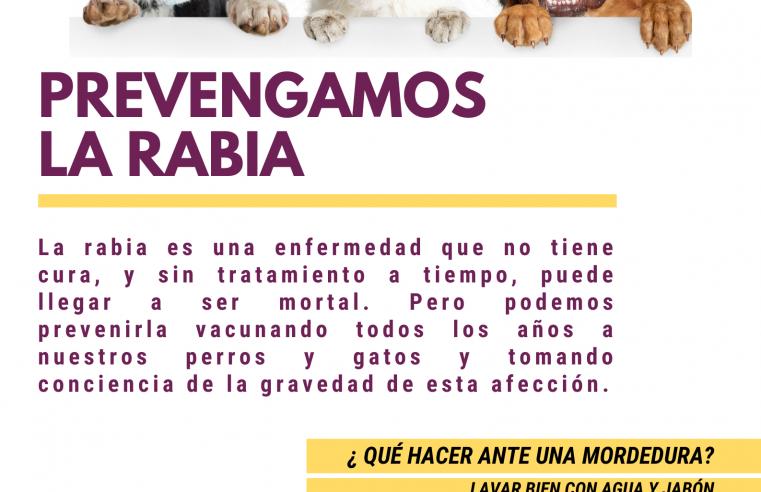 Rabia: una persona falleció en Buenos Aires