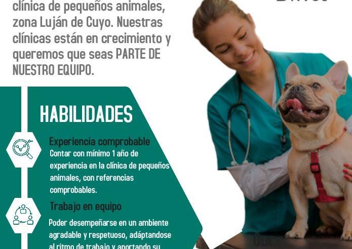 Oferta Laboral en Luján de Cuyo